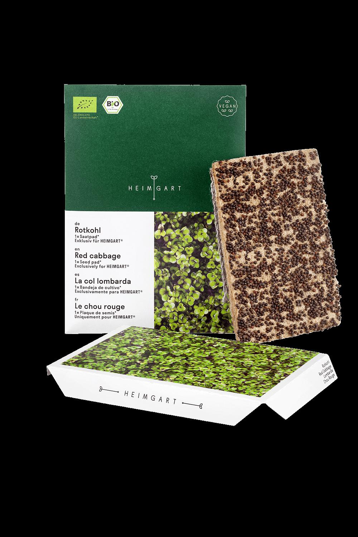 Rotkohl Saatpads von Heimgart - Microgreens Saatgut