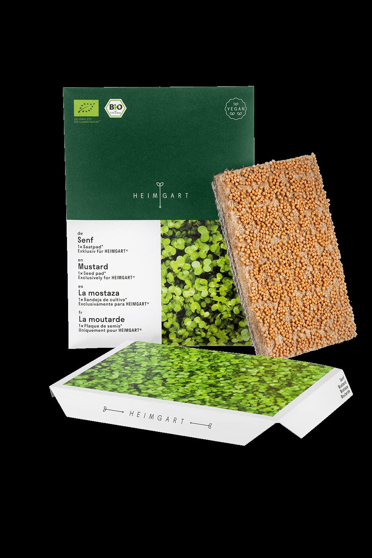 Senf Saatpads von Heimgart - Bio-Saatgut
