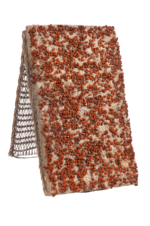 Kresse Saatband von Heimgart