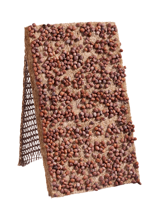 Radieschen Saatband von Heimgart