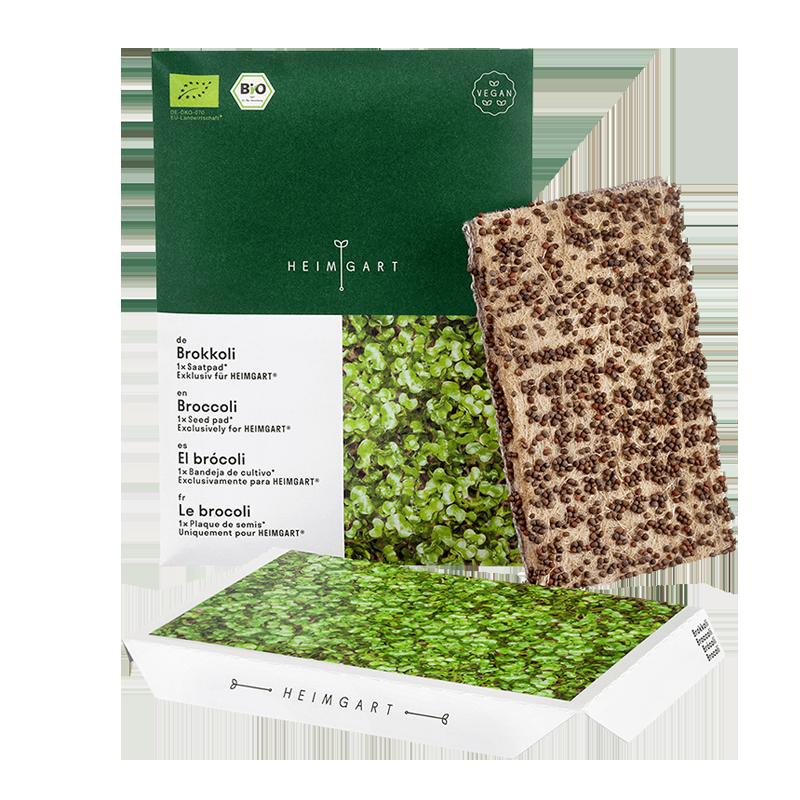 Broccoli microgreens seed pads