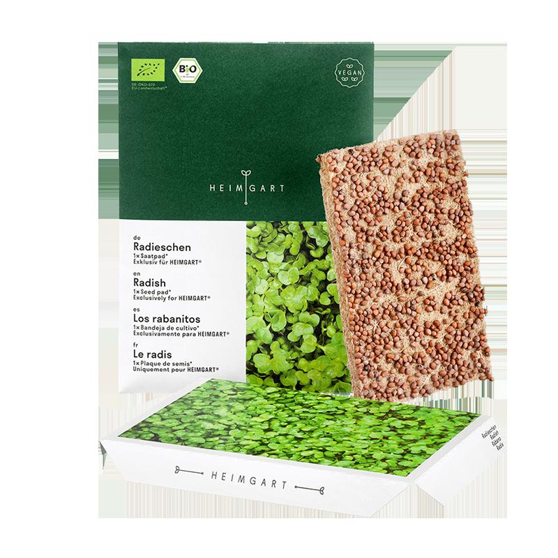 Radish microgreens seed pads