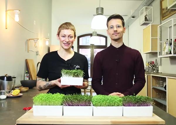 Microgreens: Sophia Hoffmann und Rittenau stellen Heimgart vor.