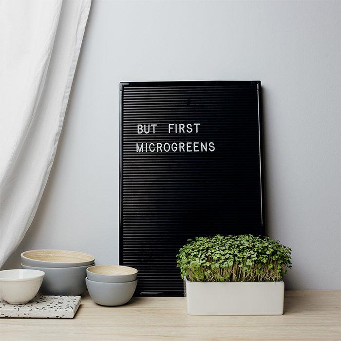 Besondere Pflanzen: Microgreens